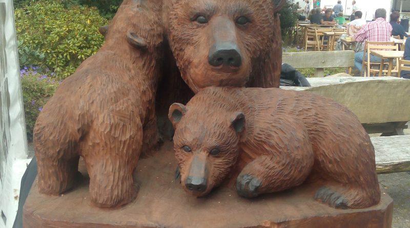 2. Bear Family Festival