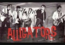 ALLIGATORS wild blue cat 1979