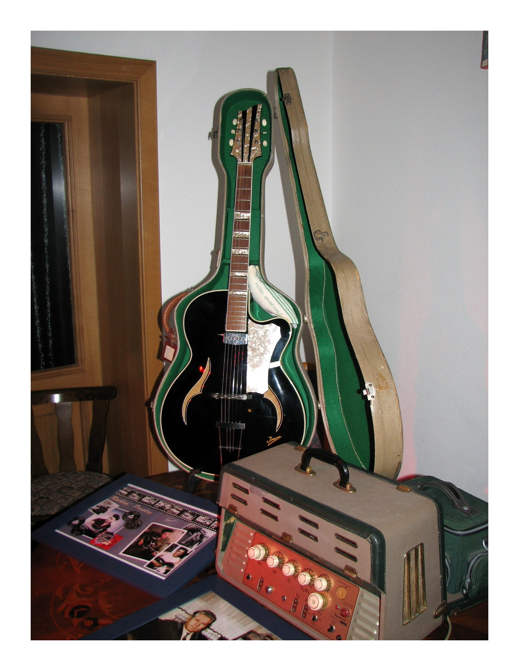 Elvis Isana Gitarre