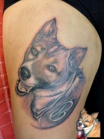 Portrait Hund Tattoo, B